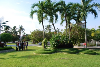 Green_park_Mactan_Cebu_City