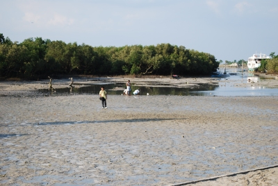 Low_tide_shore_Mactan_Cebu
