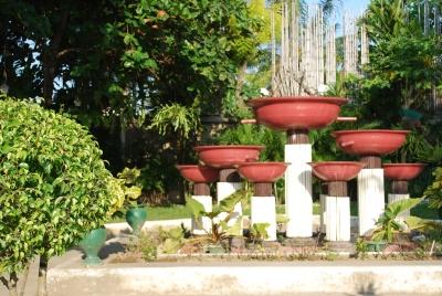 Green_plant_Mactan_park_ vase