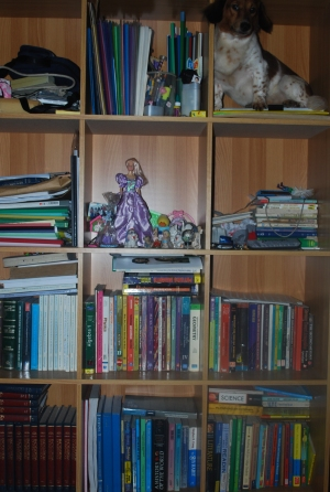 Book shelves for Roman Catholicism victims