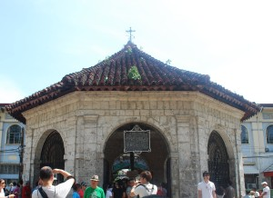 Magellan's cross area