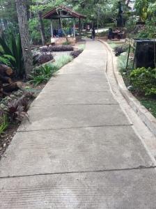 Seemingly Straight Road